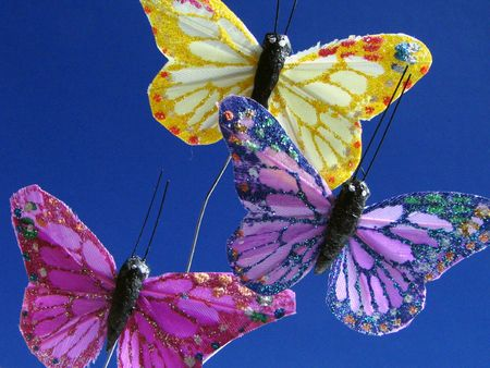 Colourful butterflies against blue background