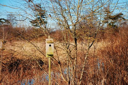 Birdhouse in marsh Stock Photo - 4332109