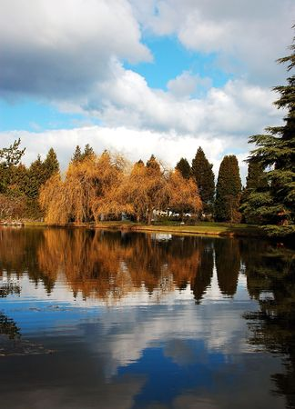 reflective: Reflective autumn lake Stock Photo