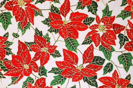 Chirstmas poinsettia floral pattern