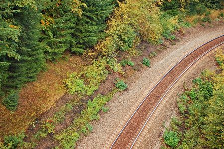 forest railway: Railway winding through forest Stock Photo