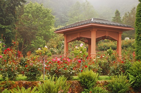 Rose garden gazebo Stock Photo