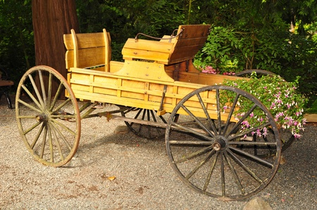 Old wooden carriage in the garden photo