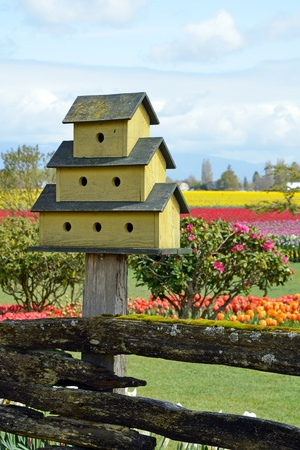 Big wooden yellow birdhouse in spring garden Stock Photo - 13283780