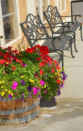 Black iron metal garden benches on patio with flower planter photo