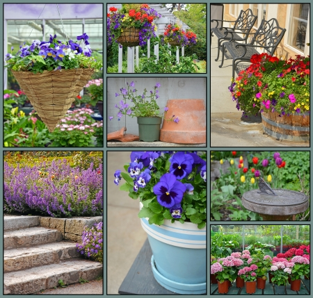 Garden collage of assorted colorful spring flowers photo