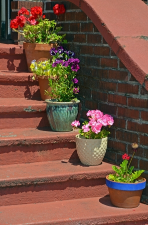 Colorful flowerpots sitting on old stairs