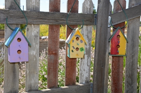 Birdhouse Fence Designs Html on pumpkin fence, reclaimed old wood fence, circular fence, bench fence, elephant fence, mirror fence, tree fence, brush fence, bird fence, bicycle fence, art fence, animal fence, painting fence, bunny fence, planter fence, slave fence, bear fence, cottage fence, squirrel fence, animated picket fence,