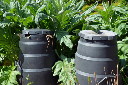 compost: Composting bins in green garden