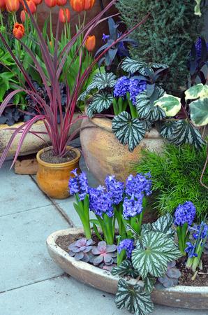 Colorful spring garden patio