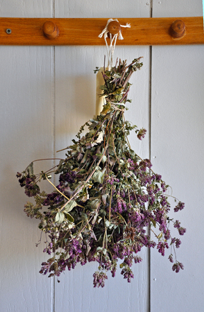 Fragrant bouquet of dried lavender flowers