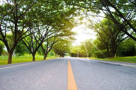 Beautiful roads with green trees along the route on sunny spring day.