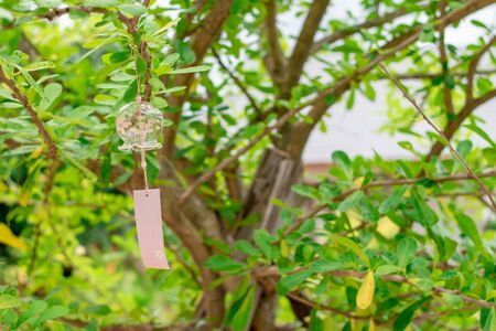 Japanese traditional craft glass bell on tree.