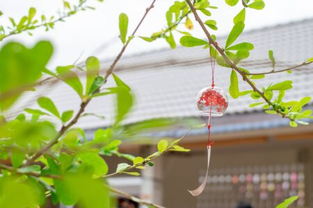 Close up of Japanese traditional craft glass bell on tree. Фото со стока