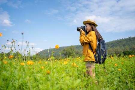 Young Asian female tourists taking photos with cameras in flower fields. Imagens