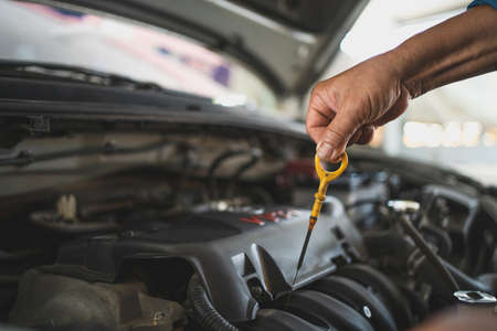 Mechanic checks the car oil in the vehicle. Car service center. Banco de Imagens