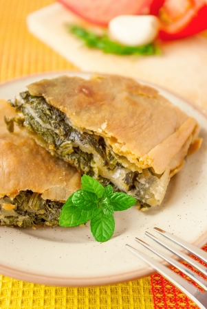 Bright vertica image of spinach pie on a plate with soft focus Stock Photo - 17965774