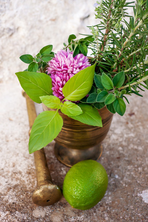 Vertical image of fresh herbs and lemon Stock Photo
