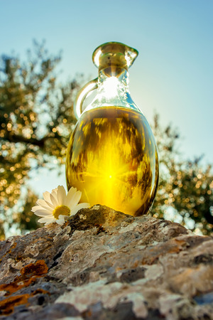 Low angle image of olive oil in bottle and the sun shining through it