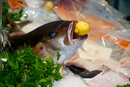 bue eyed fish head with a lemon in its mouth Stock Photo