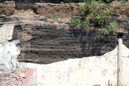 morbid wall, stone and earth only particulary covering