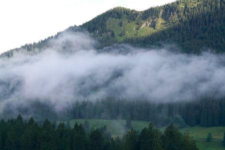 alpen: Spitzingsee with fog in the morning