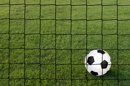 black-white football on a perfect lawn , seen from behind the goal Stock Photo