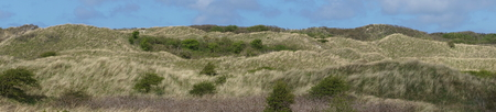 Panorama of dunes under a blue sky