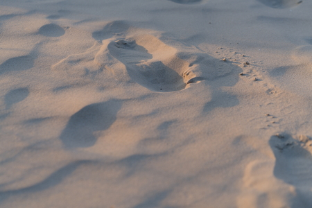 shoe trace in the sand at the beach 스톡 콘텐츠