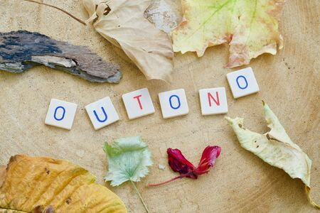 The word OUTONO in letters, leaves on a wooden background