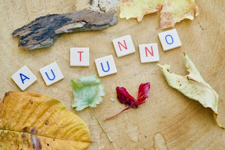 The Italian word AUTUMNO in letters, leaves on a wooden background