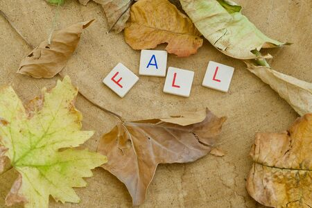 The word FALL in letters, leaves around on a wooden background Reklamní fotografie