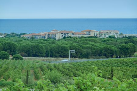 Marina behind the vineyard of Argeleles sur Mer
