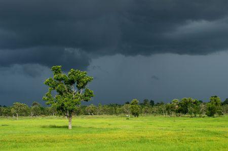 countrified: Dark Cloud of Rainy Season Stock Photo