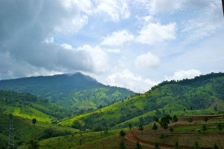decadent: The green decadent hill in rainy season