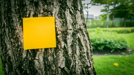 Orange sticky note on tree with graden background. Selective focus.