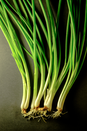 close up food: Soft light of Fresh spring onion on backboard. Vegetarian food, healthy or cooking concept.