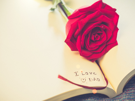 The inscription note   I love you Dad inside classic  paper book with bright Red Rose. Fathers day, Valentines concept.