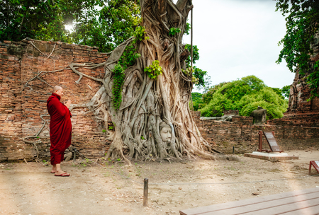 Ayutthaya, Thailand - July 16, 2017: Buddhist monk worshiping stone head buddha statue with trapped in Bodhi Tree roots Wat Mahathat (Ayutthaya). Ayutthaya historical park. Editorial