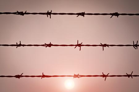 Barbed wire captivity prison freedom concept.