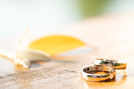 White Gold wedding rings on a wooden background.