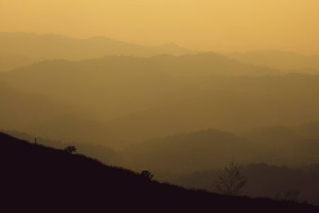 landscape fantastic sunset on foggy autumn forest valley, mystical valley background.