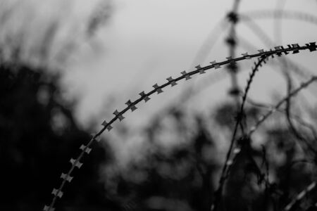 Back and white image of  Barbed wire fence with soft light  to feel Silent and lonely and want freedom. Standard-Bild