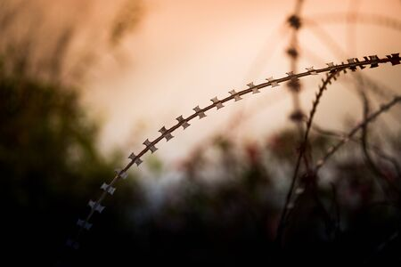 Barbed wire fence and Light of Hope. Barbed wire fence with Twilight sky to feel Silent and lonely and want freedom. 版權商用圖片