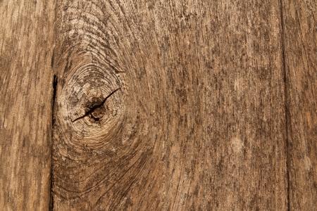 background wood, old wood photo