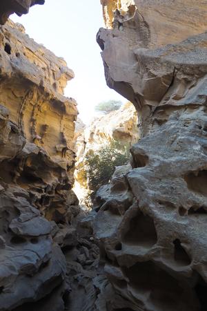 rock formation: Chahkooh Valley Qeshm island, Iran