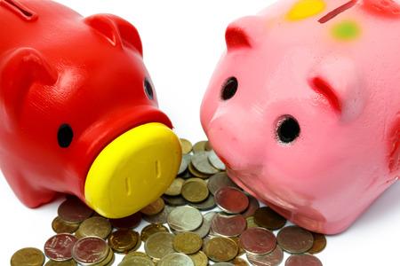 piggy bank money: piggy bank on white backgroundม focusing on right piggy bank.