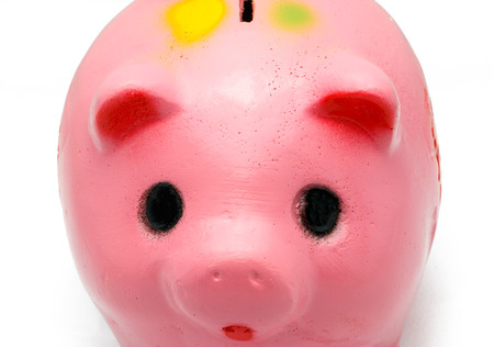 close up eye: close up eye of piggy bank on white background.