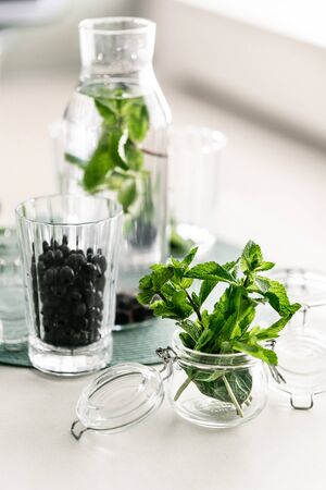 Ingredients for infused water fresh mint leaves and black currant berries in a glass