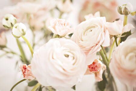 Floral pastel background.
